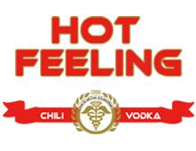 Webdesign Bonn - Vodka Hot Feeling